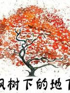 枫飒树下的地下城