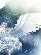 天使的禁忌之戀